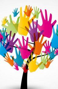 Raccordo, accoglienza e inclusione alunni BES
